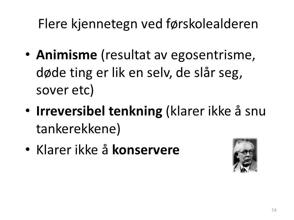 Magne Jensen 200854 • Animisme (resultat av egosentrisme, døde ting er lik en selv, de slår seg, sover etc) • Irreversibel tenkning (klarer ikke å snu tankerekkene) • Klarer ikke å konservere Flere kjennetegn ved førskolealderen