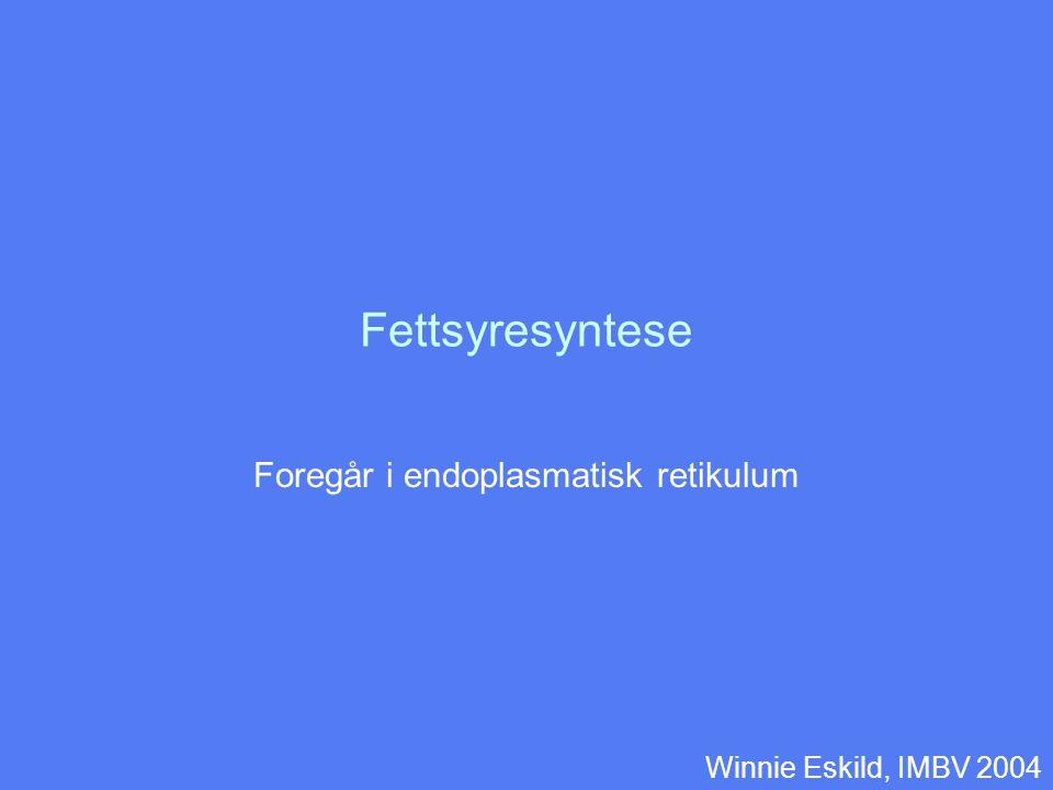 Fettsyresyntese Foregår i endoplasmatisk retikulum Winnie Eskild, IMBV 2004