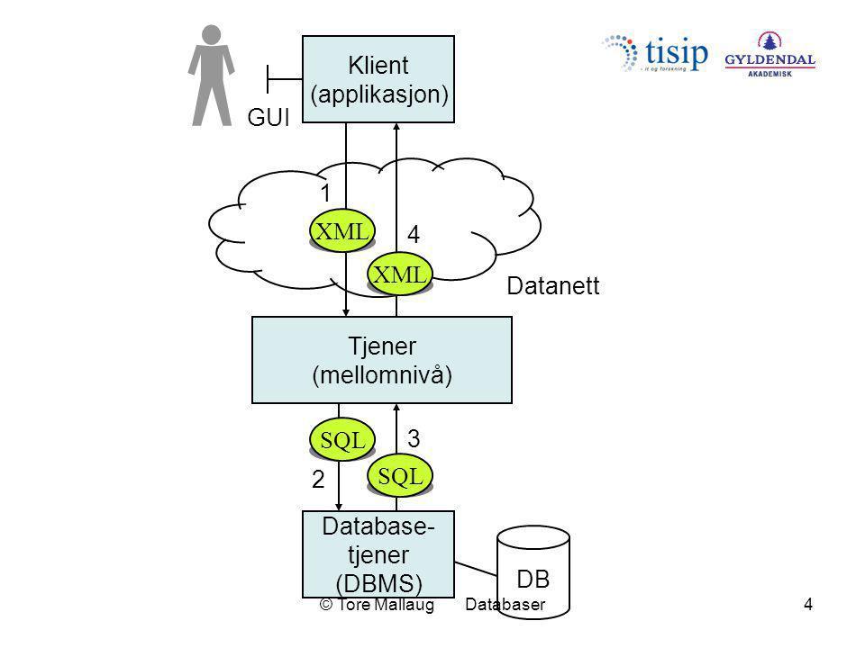 © Tore Mallaug Databaser5 Database- tjener (DBMS) DB Klient_1 (web-side) GUI Datanett Klient_2 (Visual Basic) GUI Klient_3 (Java) GUI