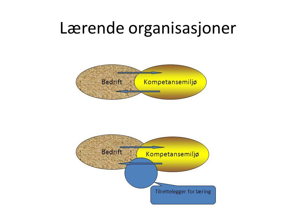 Lærende organisasjoner BedriftKompetansemiljø Bedrift Kompetansemiljø Tilrettelegger for læring