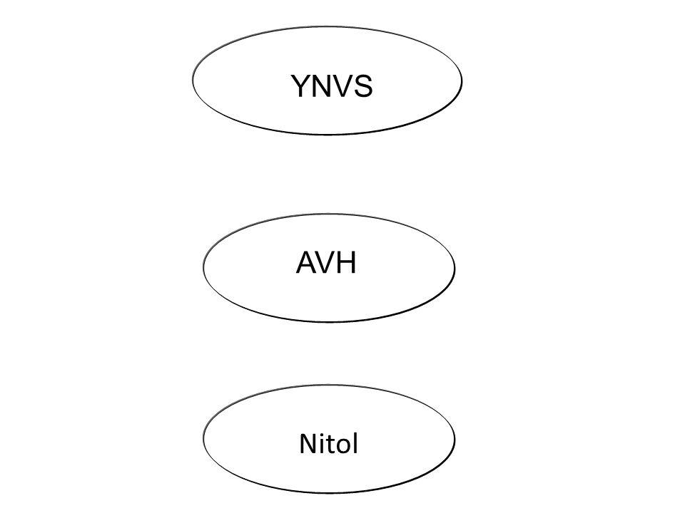 AVH YNVS Nitol