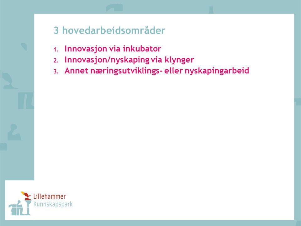 3 hovedarbeidsområder 1. Innovasjon via inkubator 2. Innovasjon/nyskaping via klynger 3. Annet næringsutviklings- eller nyskapingarbeid