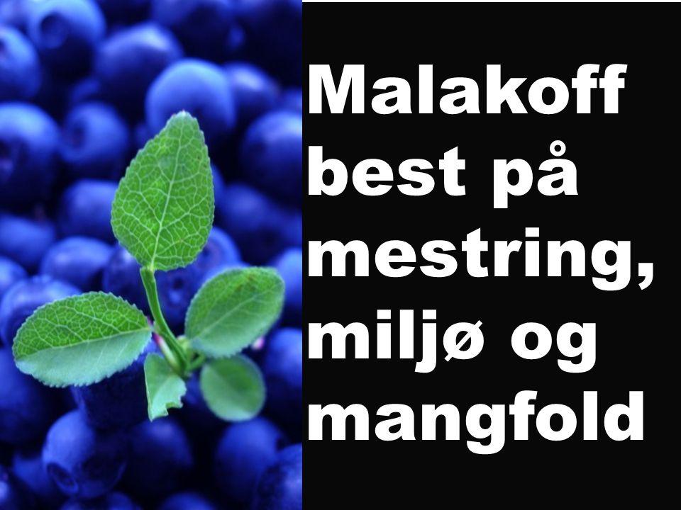 Malakoff best på mestring, miljø og mangfold