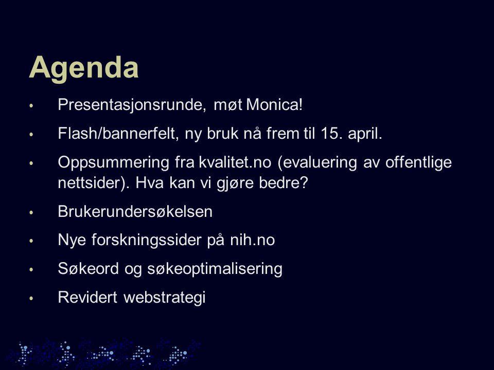 Agenda • Presentasjonsrunde, møt Monica. • Flash/bannerfelt, ny bruk nå frem til 15.