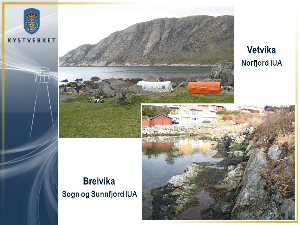 Vetvika Norfjord IUA Breivika Sogn og Sunnfjord IUA