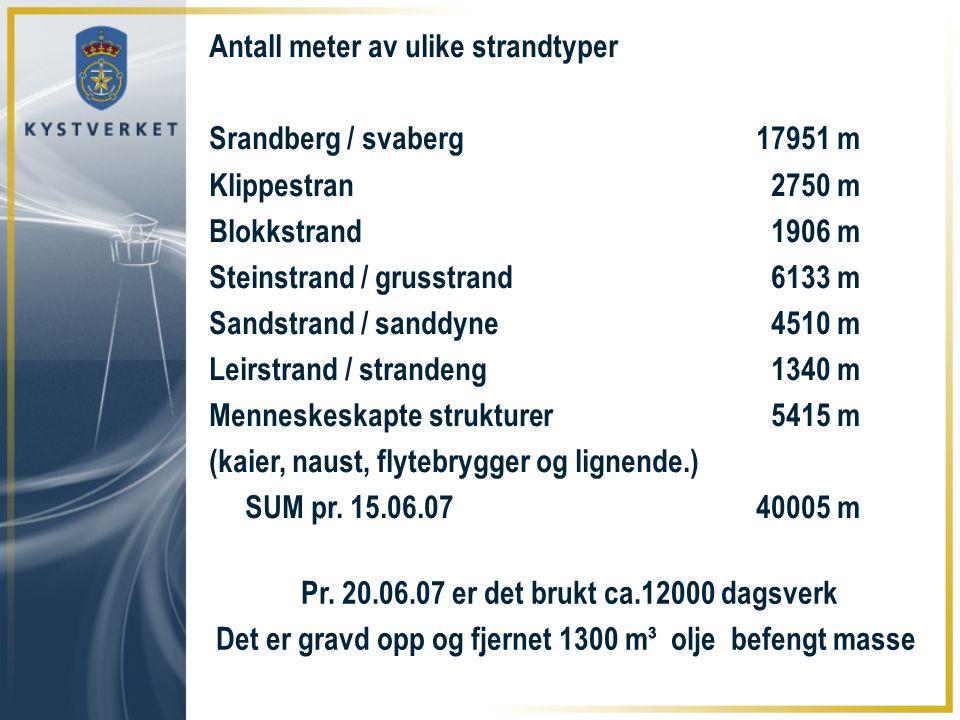 Antall meter av ulike strandtyper Srandberg / svaberg17951 m Klippestran 2750 m Blokkstrand 1906 m Steinstrand / grusstrand 6133 m Sandstrand / sanddy