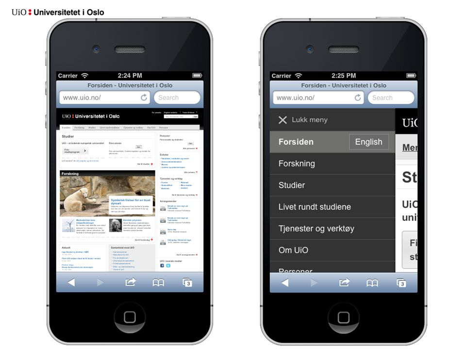 Bakgrunn •Oppleves som tungvindt å bruke nettsidene til UiO på mobil •Mobilbruken er økende –Mobilbruk på uio.no (iPhone, Android og iPad) - Januar 2013: 11,59% - Januar 2012: 6,33% –Hos Finn.no er nå 25-30% av alle besøk fra en iPad eller fra en mobiltelefon (november 2012)