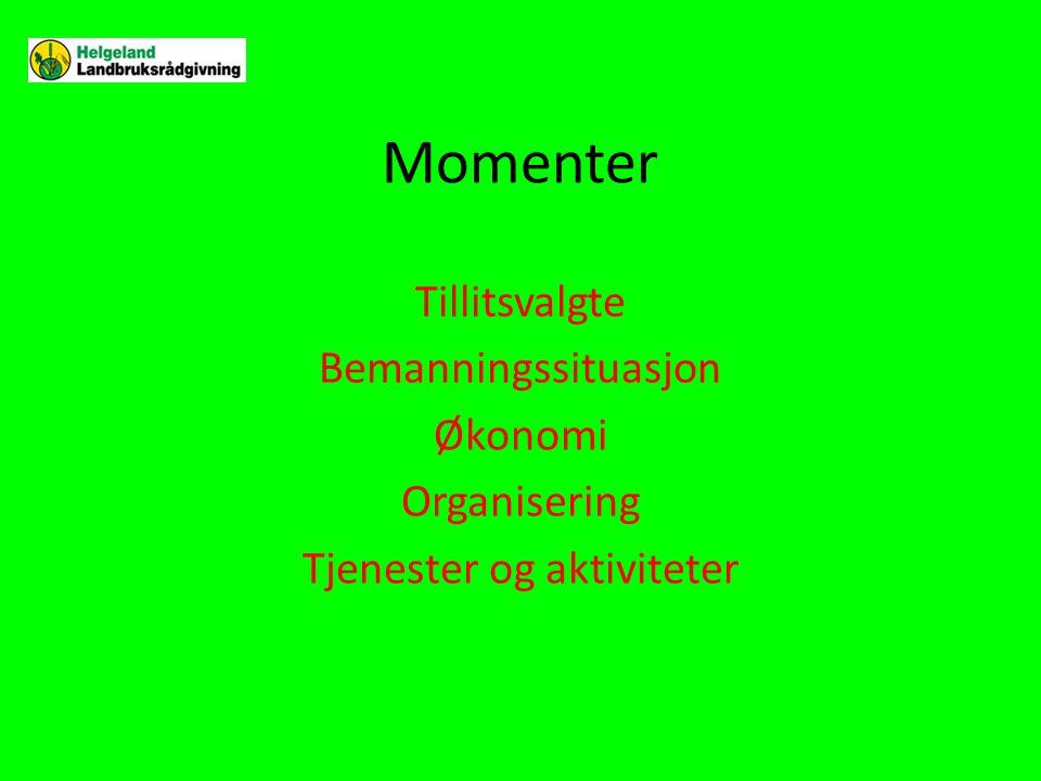 Momenter Tillitsvalgte Bemanningssituasjon Økonomi Organisering Tjenester og aktiviteter