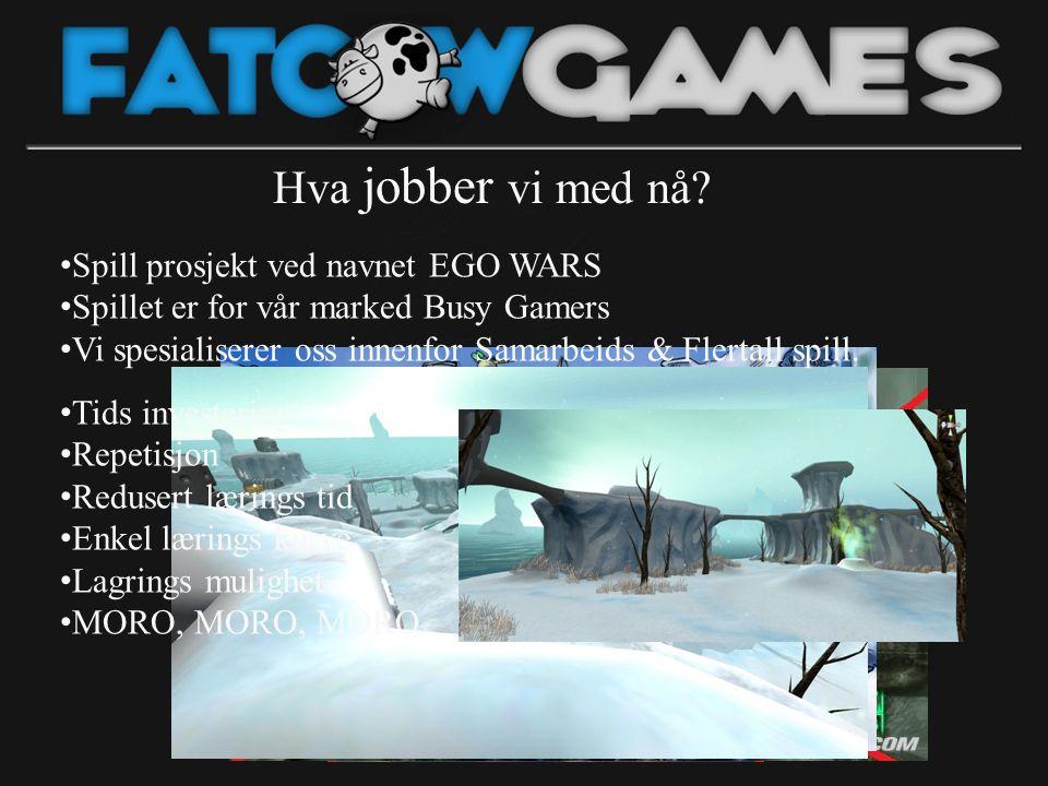• Spill prosjekt ved navnet EGO WARS • Spillet er for vår marked Busy Gamers • Vi spesialiserer oss innenfor Samarbeids & Flertall spill. Hva jobber v