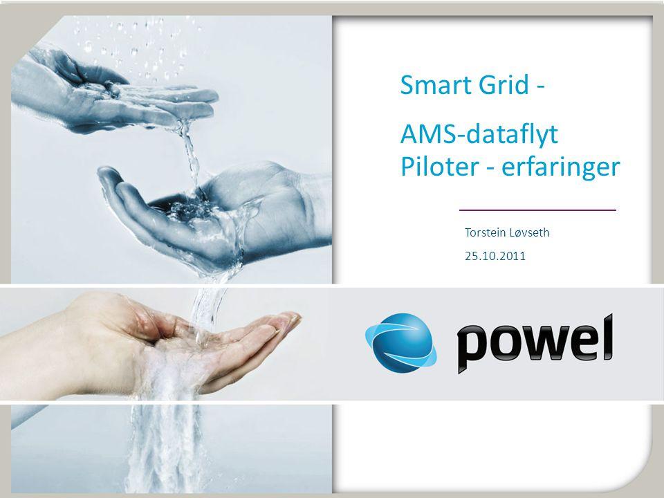 Smart Grid - AMS-dataflyt Piloter - erfaringer Torstein Løvseth 25.10.2011