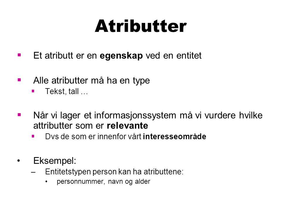 Atributter  Et atributt er en egenskap ved en entitet  Alle atributter må ha en type  Tekst, tall …  Når vi lager et informasjonssystem må vi vurd