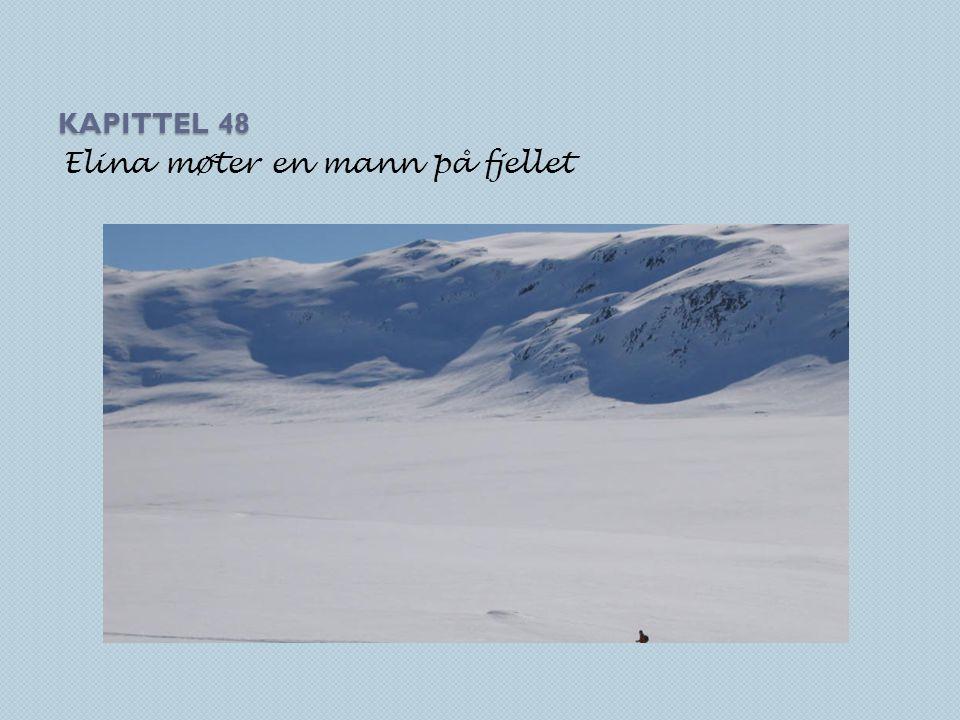 KAPITTEL 48 Elina møter en mann på fjellet