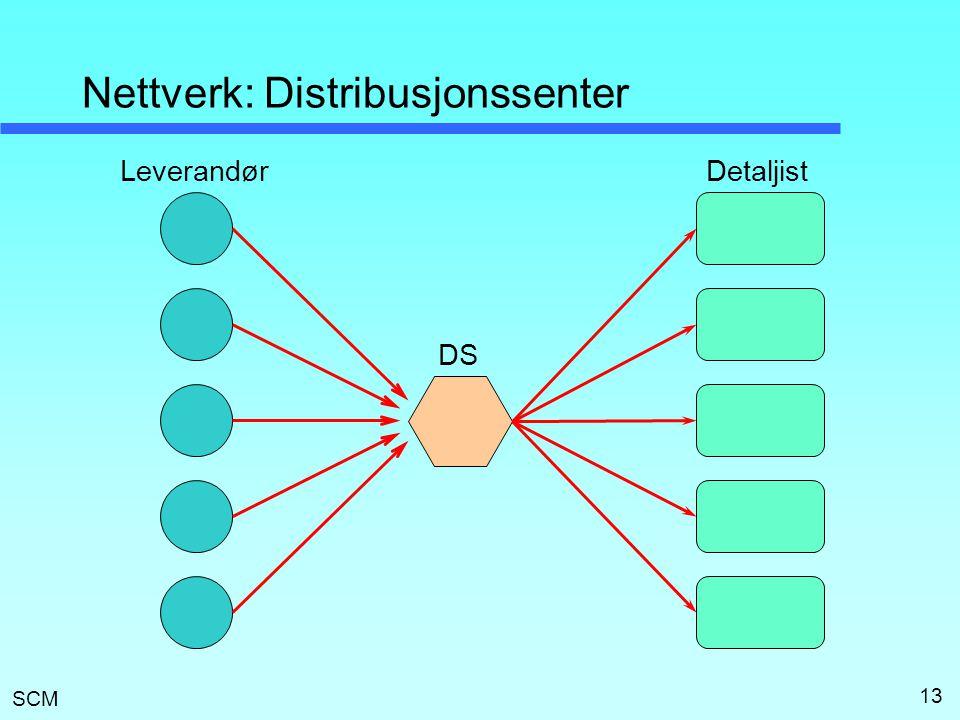 SCM 13 Nettverk: Distribusjonssenter LeverandørDetaljist DS