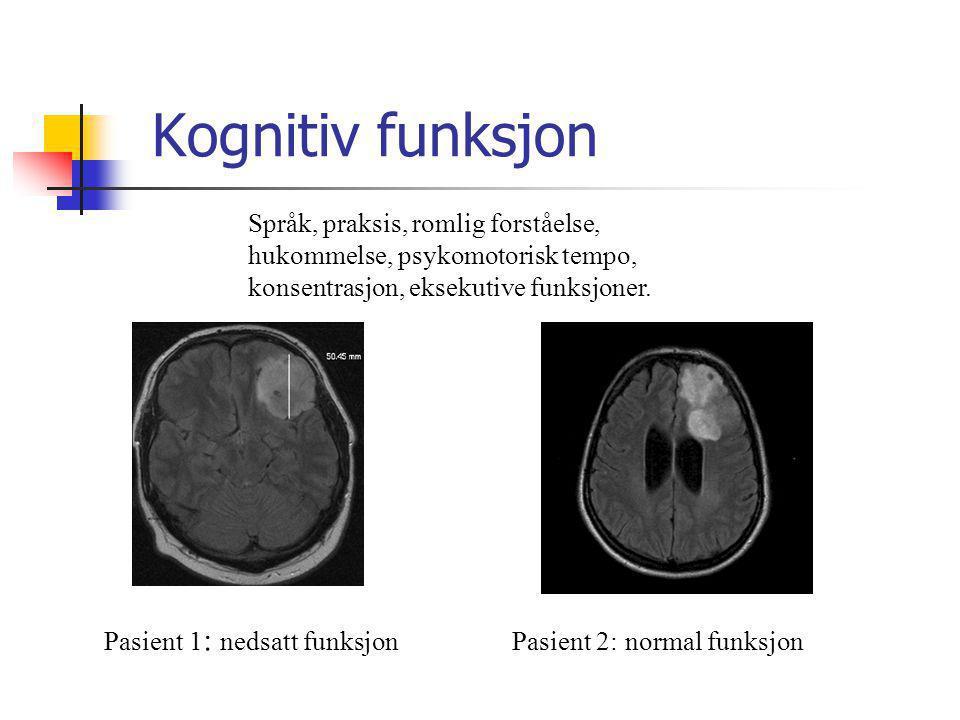Språk, praksis, romlig forståelse, hukommelse, psykomotorisk tempo, konsentrasjon, eksekutive funksjoner. Pasient 1 : nedsatt funksjonPasient 2: norma