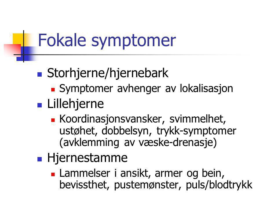 Fokale symptomer  Storhjerne/hjernebark  Symptomer avhenger av lokalisasjon  Lillehjerne  Koordinasjonsvansker, svimmelhet, ustøhet, dobbelsyn, tr