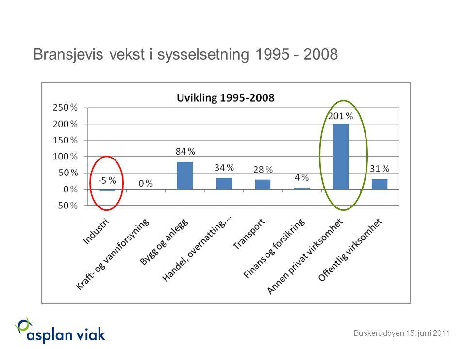 Bransjevis vekst i sysselsetning 1995 - 2008 Buskerudbyen 15. juni 2011