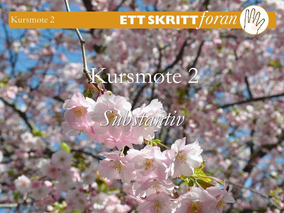 Ett skritt foran 4 © Iréne Johansson 1 Kursmøte 2 Substantiv Substantiv