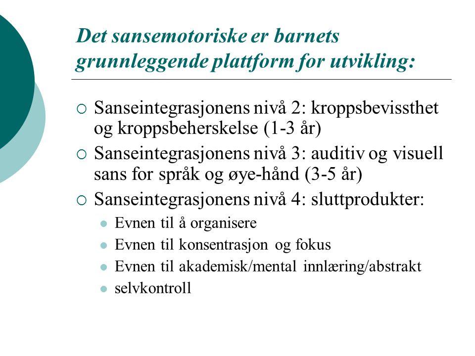 Det sansemotoriske er barnets grunnleggende plattform for utvikling:  Sanseintegrasjonens nivå 2: kroppsbevissthet og kroppsbeherskelse (1-3 år)  Sa