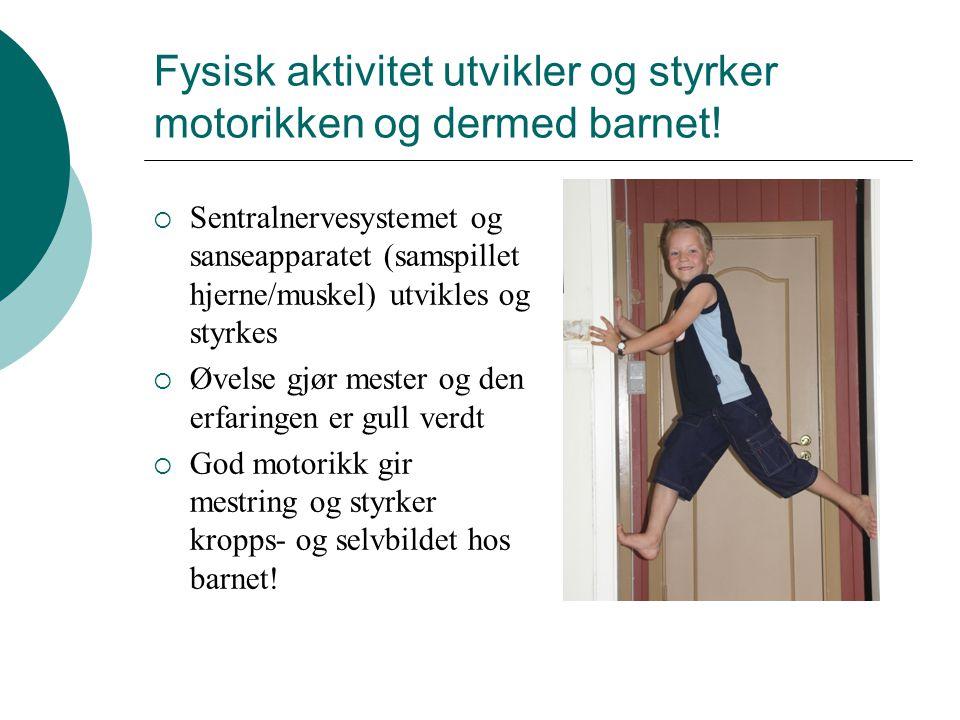 Fysisk aktivitet utvikler og styrker motorikken og dermed barnet!  Sentralnervesystemet og sanseapparatet (samspillet hjerne/muskel) utvikles og styr