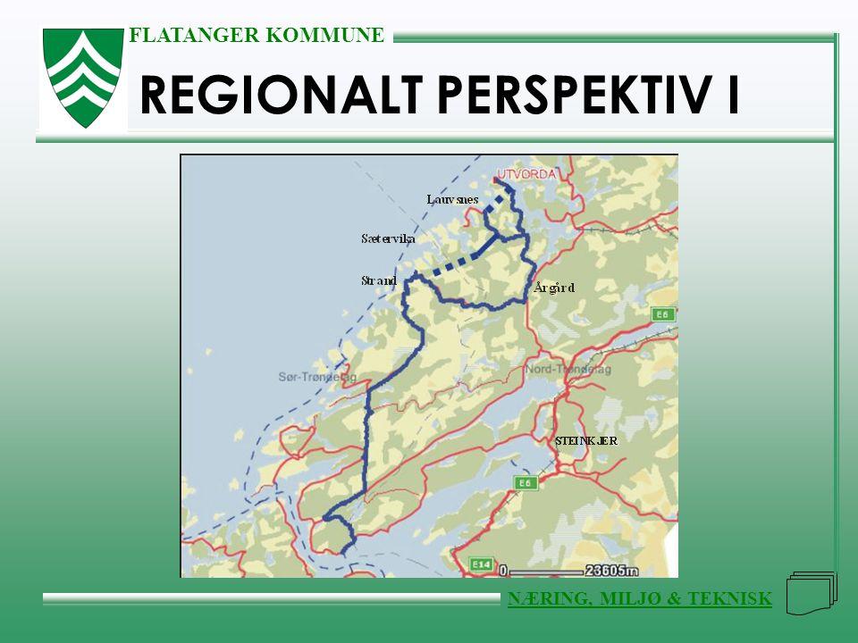 FLATANGER KOMMUNE NÆRING, MILJØ & TEKNISK REGIONALT PERSPEKTIV I