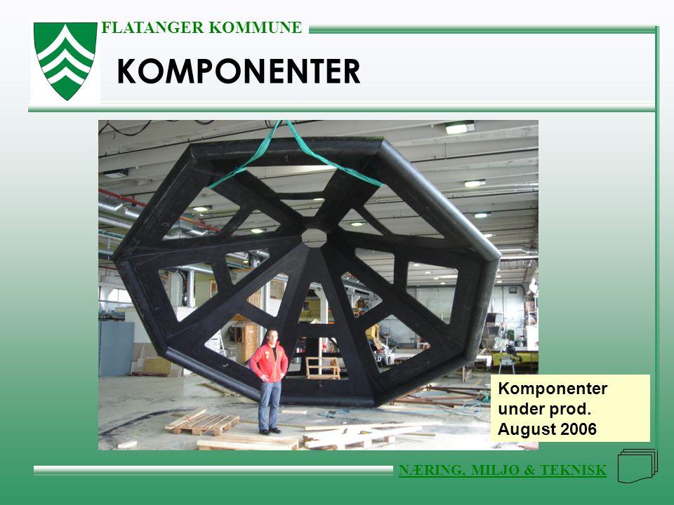 FLATANGER KOMMUNE NÆRING, MILJØ & TEKNISK KOMPONENTER Komponenter under prod. August 2006