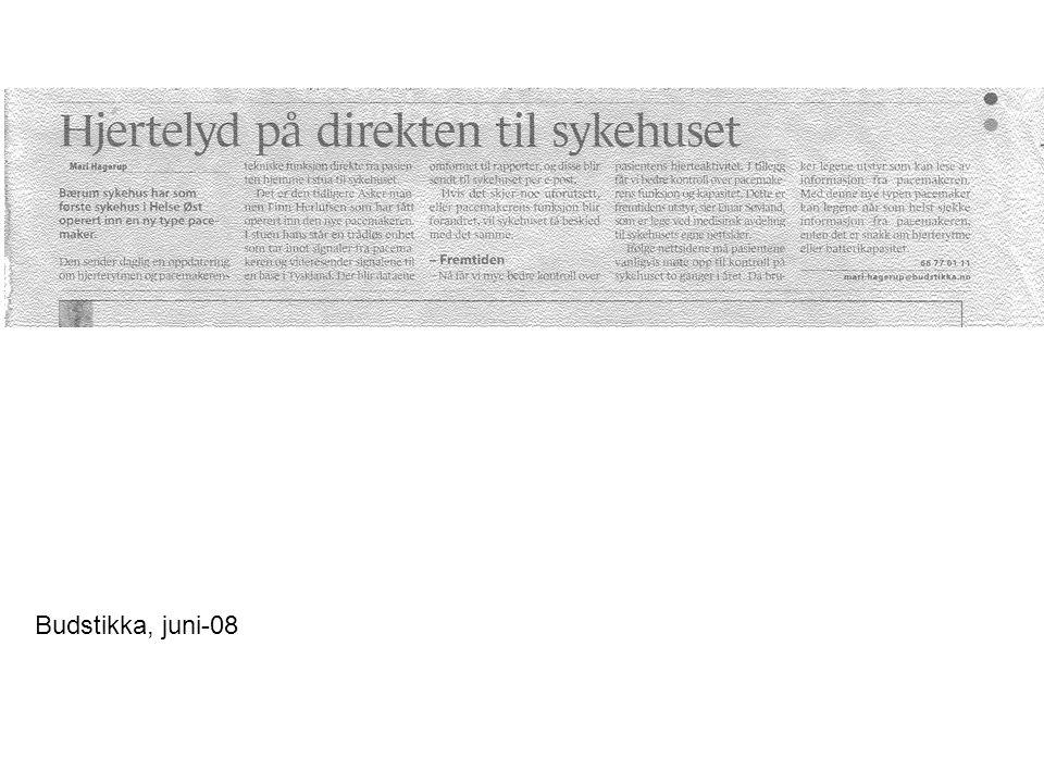 Budstikka, juni-08