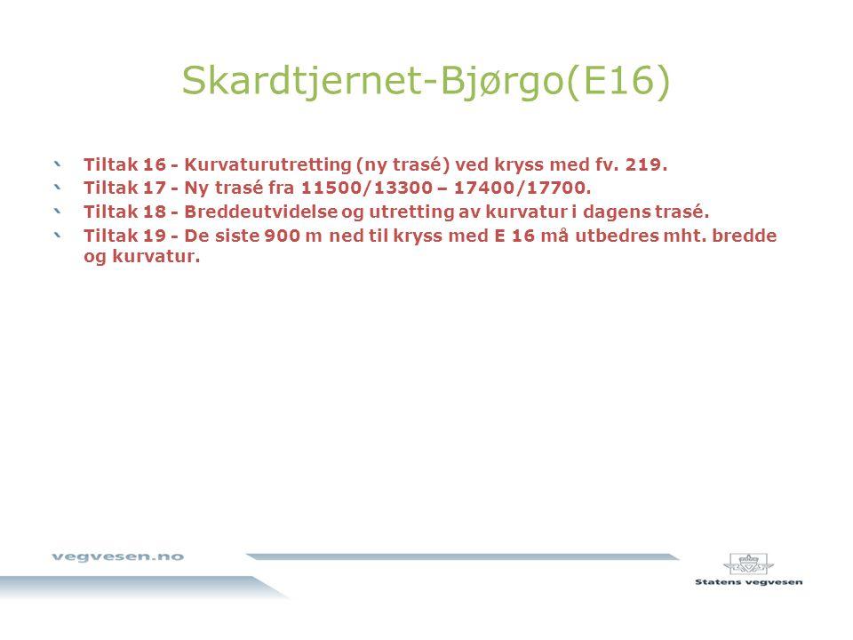 Skardtjernet-Bjørgo(E16) Tiltak 16 - Kurvaturutretting (ny trasé) ved kryss med fv.