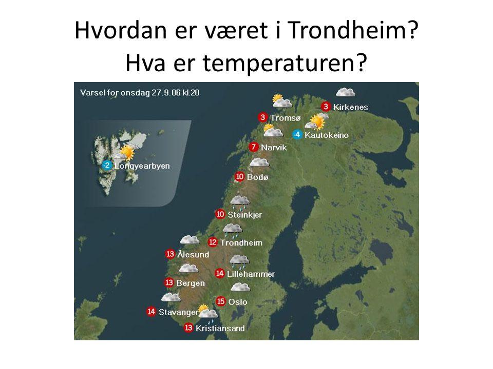 Hvordan er været i Trondheim? Hva er temperaturen?