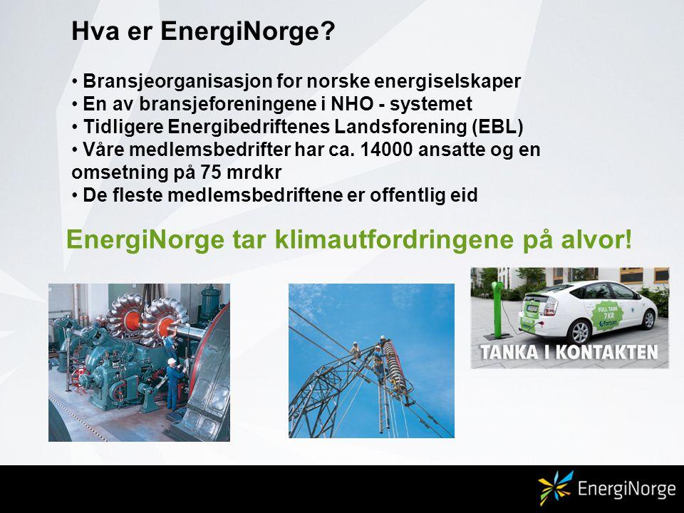 Hva er EnergiNorge? • Bransjeorganisasjon for norske energiselskaper • En av bransjeforeningene i NHO - systemet • Tidligere Energibedriftenes Landsfo