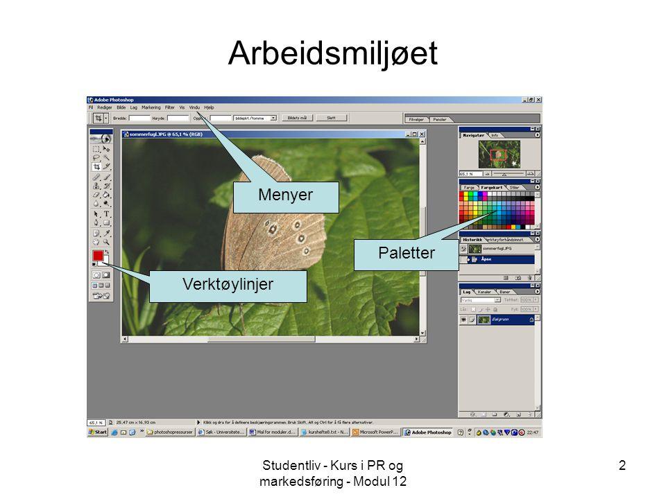Studentliv - Kurs i PR og markedsføring - Modul 12 2 Arbeidsmiljøet Verktøylinjer Menyer Paletter