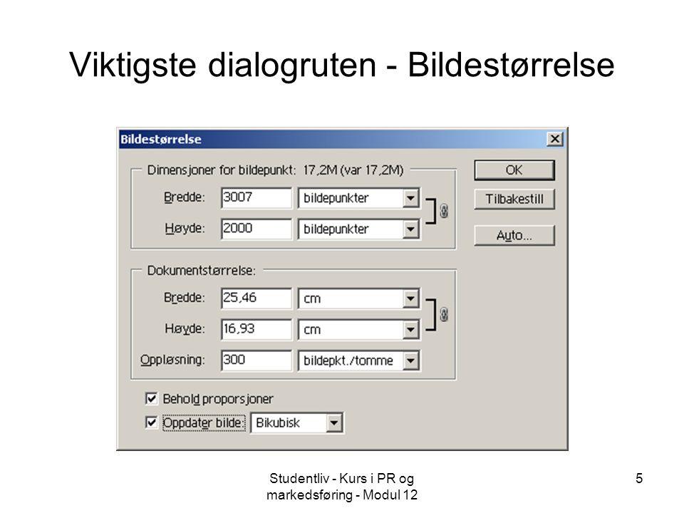 Studentliv - Kurs i PR og markedsføring - Modul 12 5 Viktigste dialogruten - Bildestørrelse