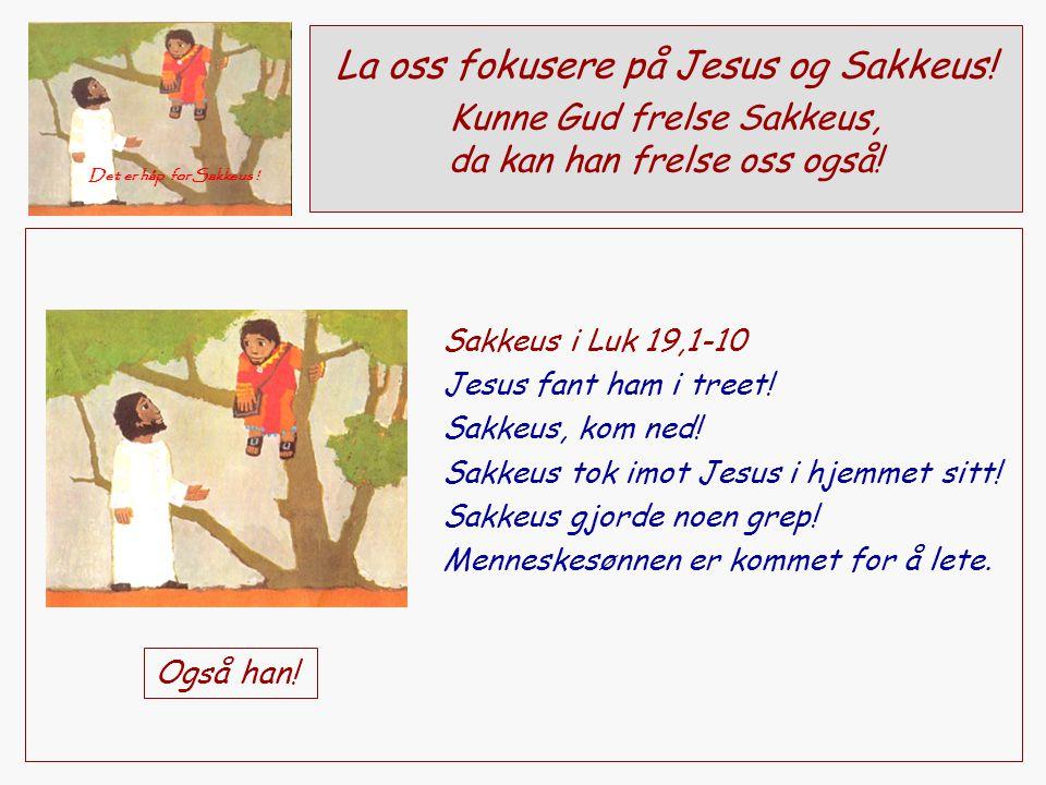 La oss fokusere på Jesus og Sakkeus! Kunne Gud frelse Sakkeus, da kan han frelse oss også! Det er håp for Sakkeus ! Sakkeus i Luk 19,1-10 Jesus fant h