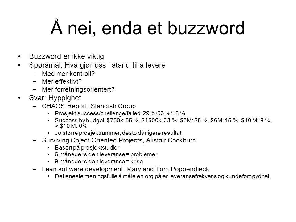 Å nei, enda et buzzword •Buzzword er ikke viktig •Spørsmål: Hva gjør oss i stand til å levere –Med mer kontroll.