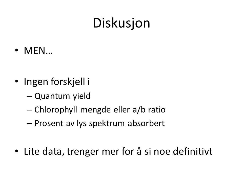 Diskusjon • MEN… • Ingen forskjell i – Quantum yield – Chlorophyll mengde eller a/b ratio – Prosent av lys spektrum absorbert • Lite data, trenger mer for å si noe definitivt