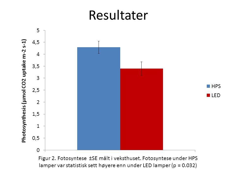 Resultater Figur 2.Fotosyntese ±SE målt i veksthuset.