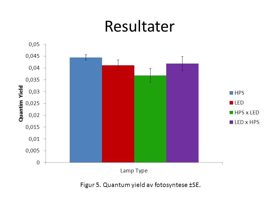 Resultater Figur 5. Quantum yield av fotosyntese ±SE.