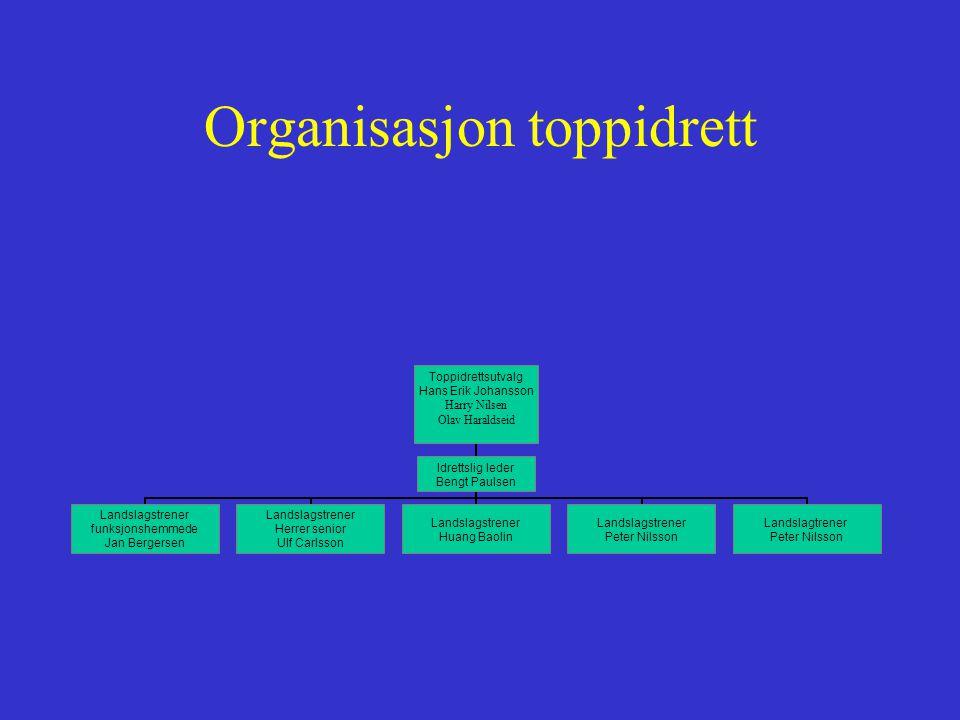 Strategi •Fokus på en tettere oppfølging av toppidrettsutøvere i et helhetlig perspektiv (fysisk, sosialt, psykisk, moralsk).