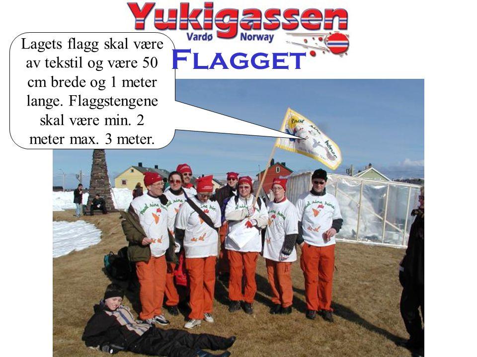 Lagets flagg skal være av tekstil og være 50 cm brede og 1 meter lange. Flaggstengene skal være min. 2 meter max. 3 meter. Flagget
