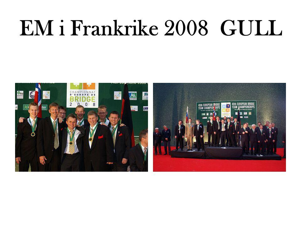 EM i Frankrike 2008 GULL