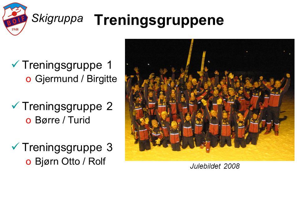Skigruppa Treningsgruppene  Treningsgruppe 1 oGjermund / Birgitte  Treningsgruppe 2 oBørre / Turid  Treningsgruppe 3 oBjørn Otto / Rolf Julebildet 2008