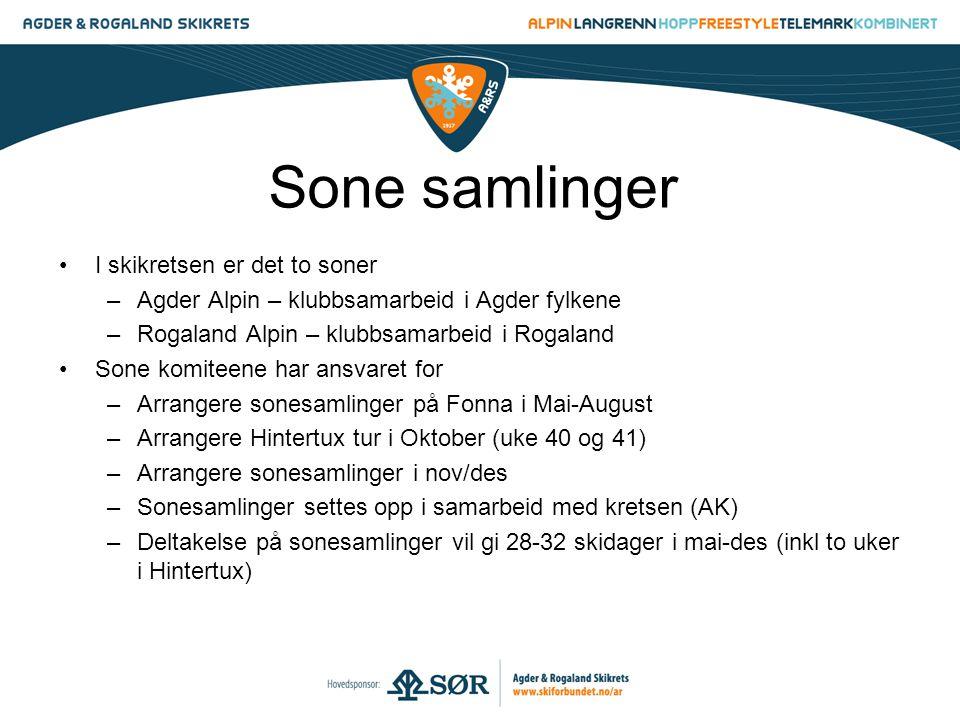 Sone samlinger •I skikretsen er det to soner –Agder Alpin – klubbsamarbeid i Agder fylkene –Rogaland Alpin – klubbsamarbeid i Rogaland •Sone komiteene