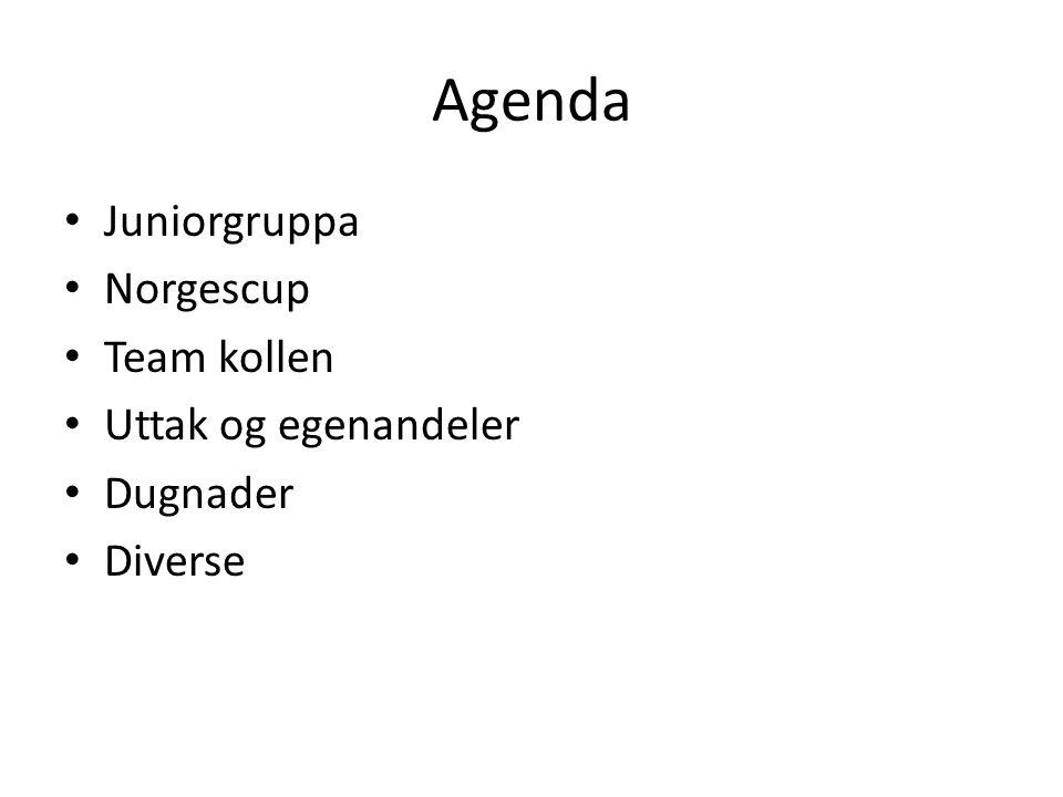 Agenda • Juniorgruppa • Norgescup • Team kollen • Uttak og egenandeler • Dugnader • Diverse