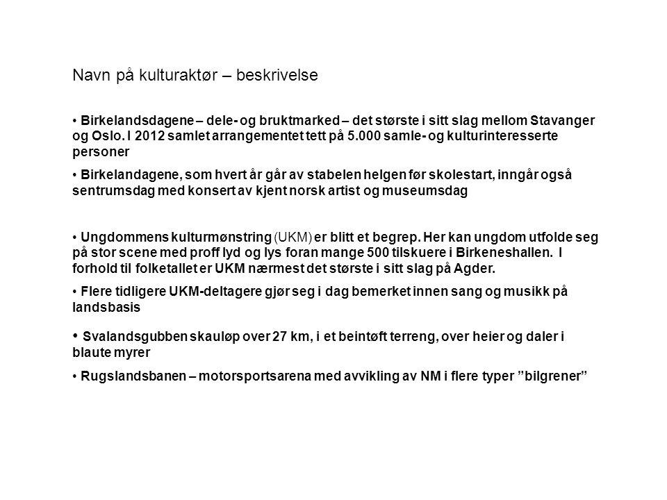 Navn på kulturaktør – beskrivelse • Birkelandsdagene – dele- og bruktmarked – det største i sitt slag mellom Stavanger og Oslo. I 2012 samlet arrangem