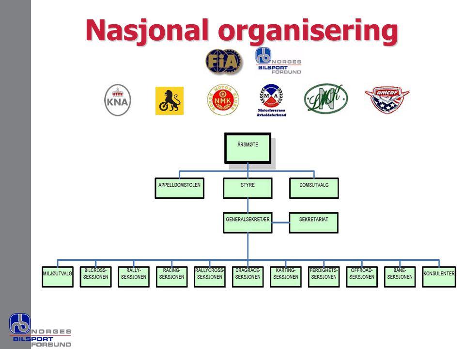 Nasjonal organisering