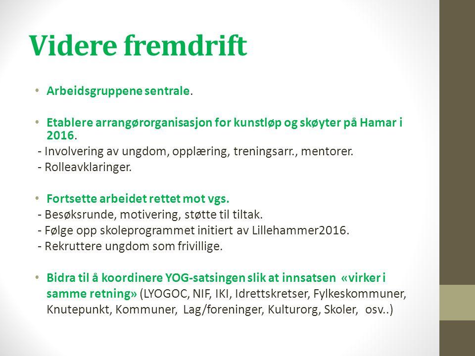 Videre fremdrift • Arbeidsgruppene sentrale. • Etablere arrangørorganisasjon for kunstløp og skøyter på Hamar i 2016. - Involvering av ungdom, opplæri