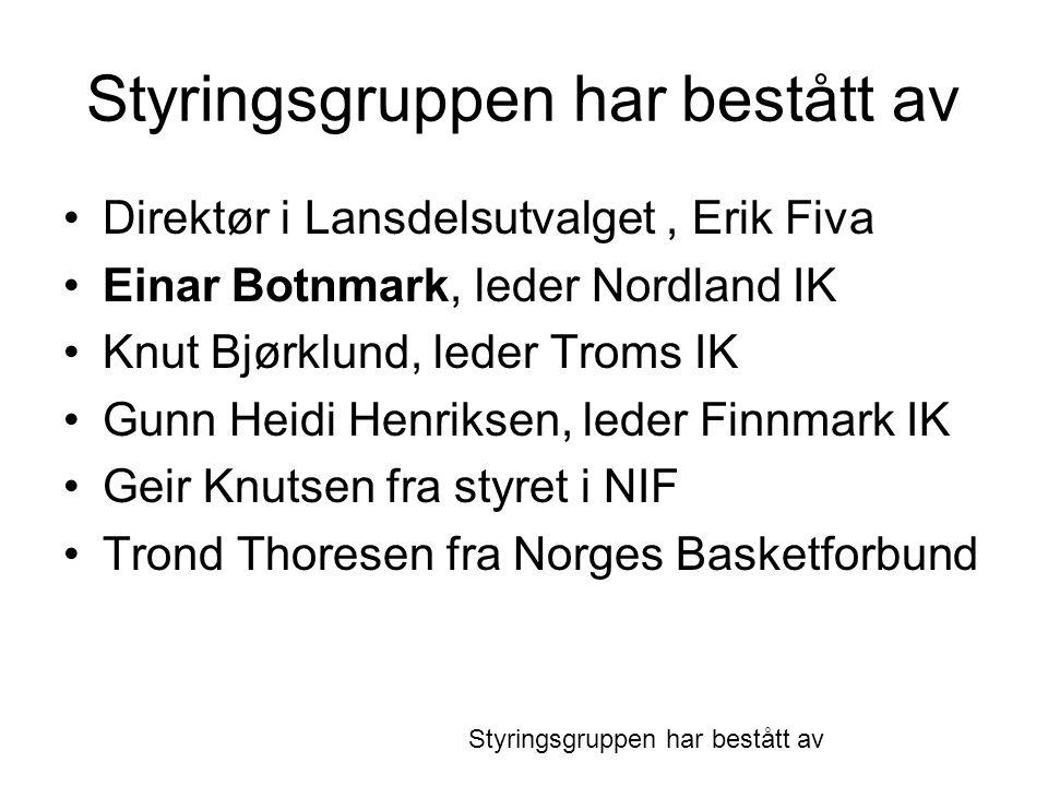 Styringsgruppen har bestått av •Direktør i Lansdelsutvalget, Erik Fiva •Einar Botnmark, leder Nordland IK •Knut Bjørklund, leder Troms IK •Gunn Heidi