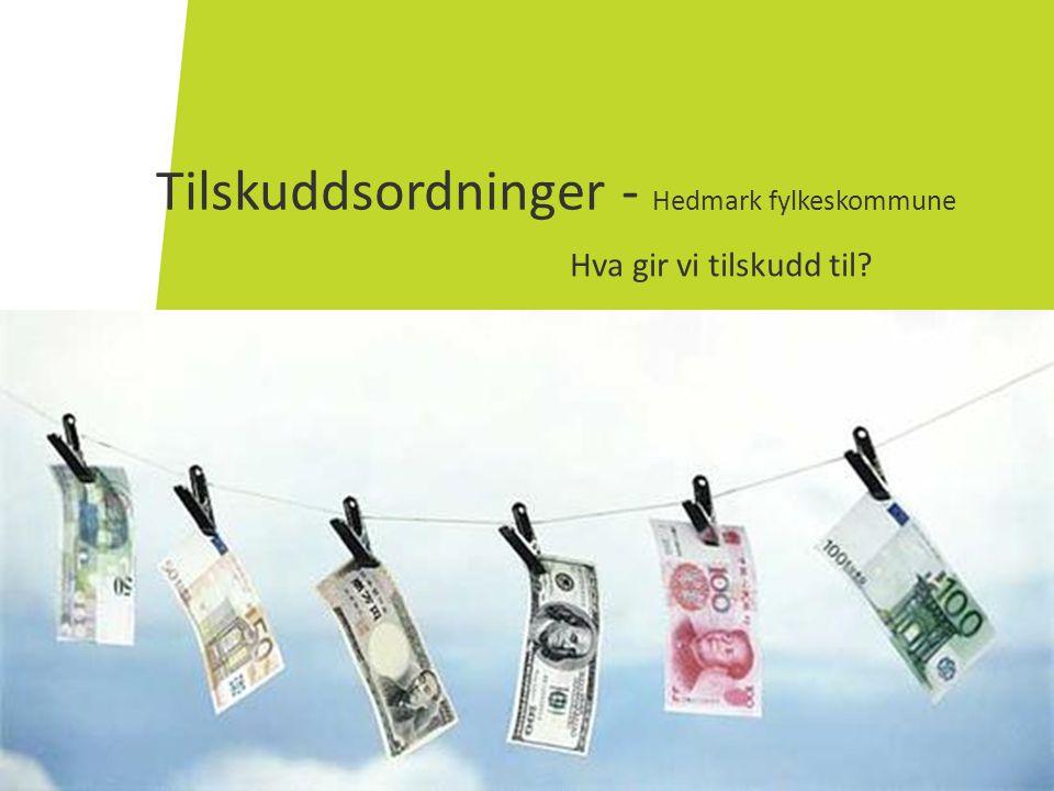 Tilskuddsordninger - Hedmark fylkeskommune Hva gir vi tilskudd til?