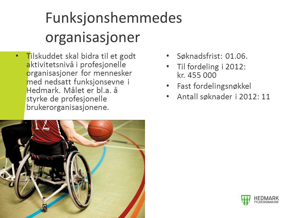 Funksjonshemmedes organisasjoner • Tilskuddet skal bidra til et godt aktivitetsnivå i profesjonelle organisasjoner for mennesker med nedsatt funksjons