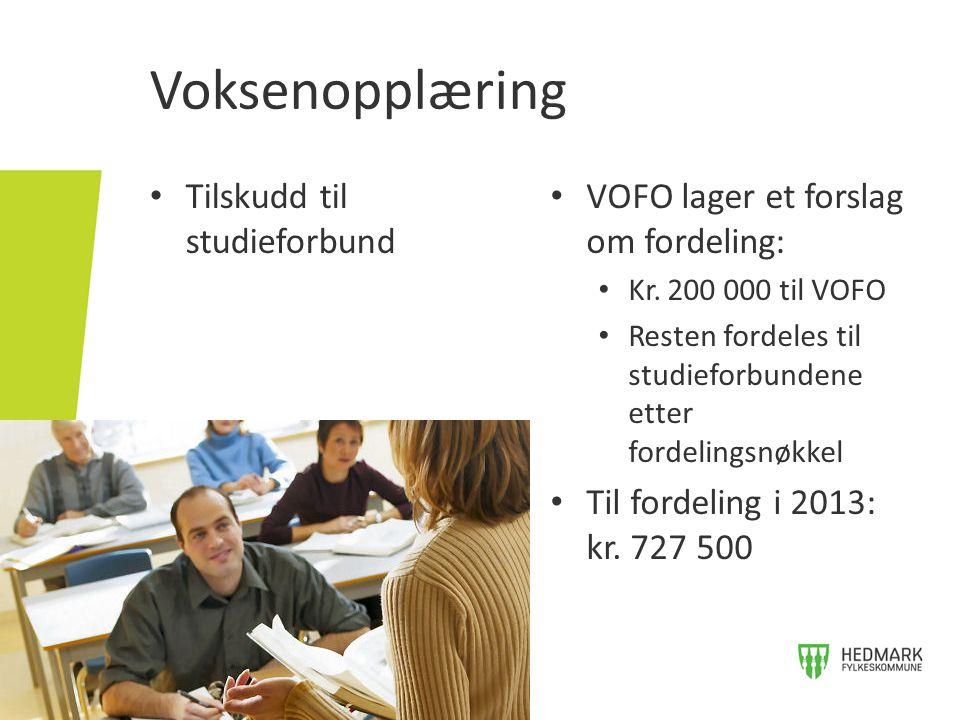 Voksenopplæring • Tilskudd til studieforbund • VOFO lager et forslag om fordeling: • Kr. 200 000 til VOFO • Resten fordeles til studieforbundene etter