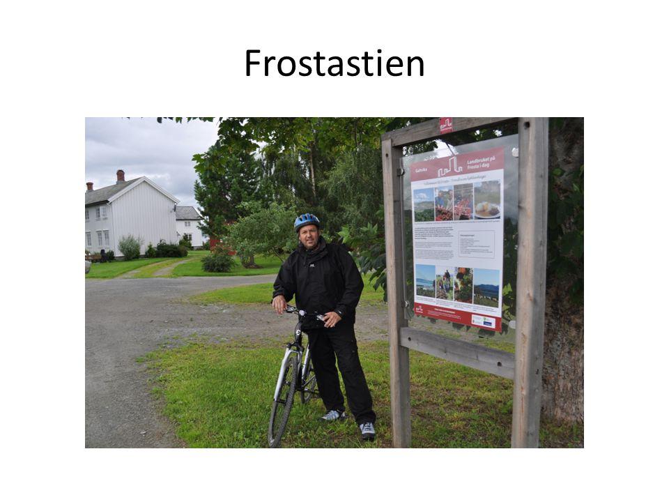 Frostastien